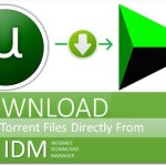 How to download torrent file in IDM